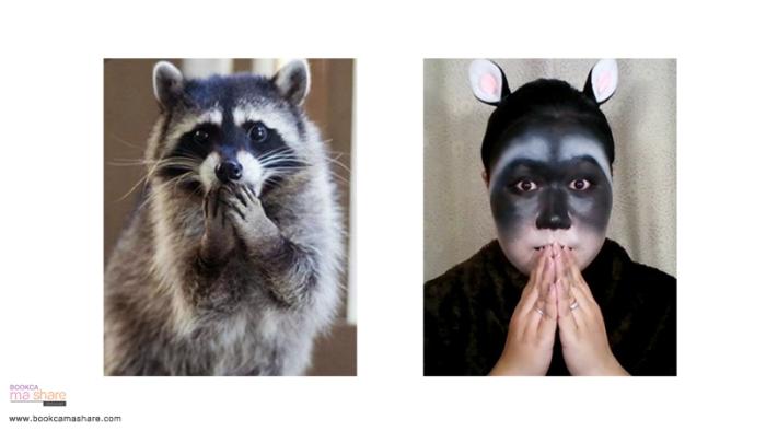 raccoons-makeup-09