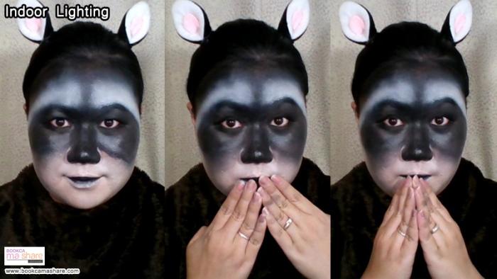 raccoons-makeup-10