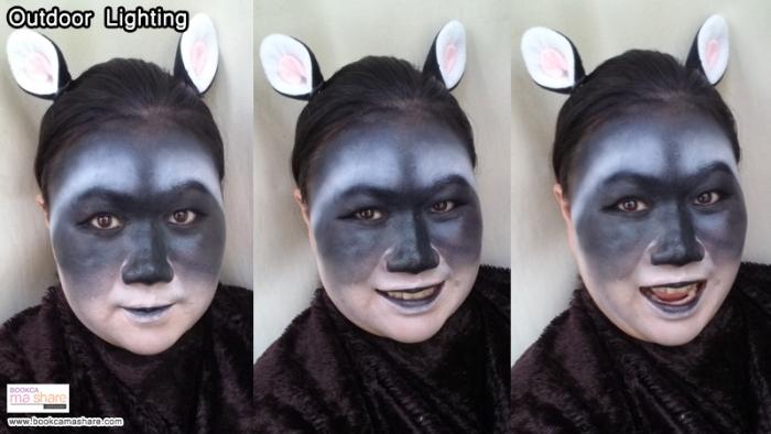 raccoons-makeup-11
