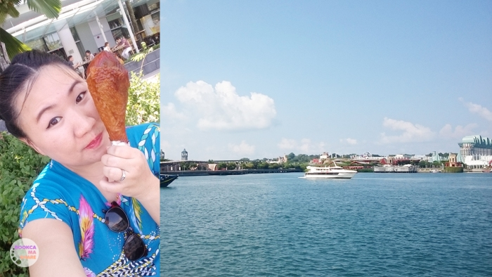 SINGAPORE-travel-food-shopping-traveloka-booking-hotel-hostel-flight-36