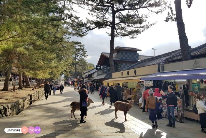 bookmashare-review-howto-blogger-travel-plan-hotel-airline-pantip-kansai-kyoto-kanazawa-osaka-takayama-shirakawago-nara-157