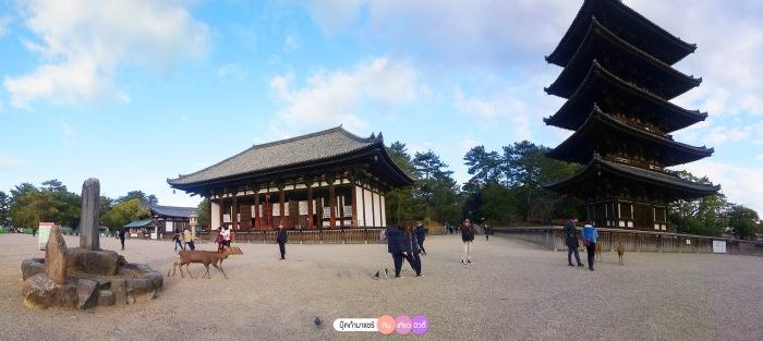 bookmashare-review-howto-blogger-travel-plan-hotel-airline-pantip-kansai-kyoto-kanazawa-osaka-takayama-shirakawago-nara-159