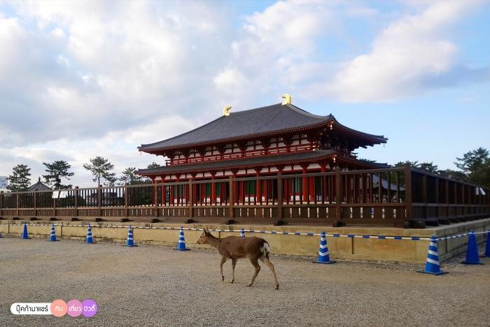 bookmashare-review-howto-blogger-travel-plan-hotel-airline-pantip-kansai-kyoto-kanazawa-osaka-takayama-shirakawago-nara-160