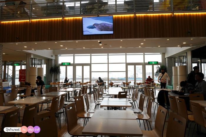 bookmashare-review-howto-blogger-travel-plan-hotel-airline-pantip-kansai-kyoto-kanazawa-osaka-takayama-shirakawago-nara-174