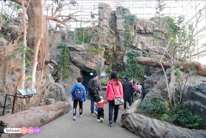 bookmashare-review-howto-blogger-travel-plan-hotel-airline-pantip-kansai-kyoto-kanazawa-osaka-takayama-shirakawago-nara-183